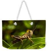 Grasshopper Macro Weekender Tote Bag
