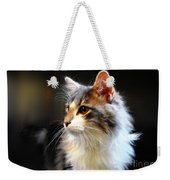 Gray And White Cat Weekender Tote Bag