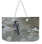 Gray Bird Weekender Tote Bag
