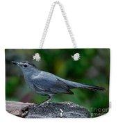 Gray Catbird Dumetella Carolinensis Weekender Tote Bag