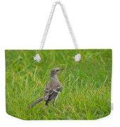Gray-eyed Catbird Weekender Tote Bag