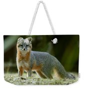 Gray Fox On Alert Weekender Tote Bag
