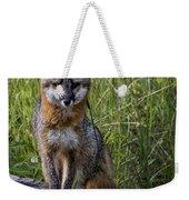 Gray Fox Posing Weekender Tote Bag