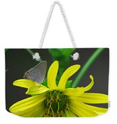 Gray Hairstreak Butterfly Weekender Tote Bag