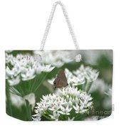Gray Hairstreak On White Blossoms Weekender Tote Bag