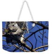 Gray Squirrel Weekender Tote Bag