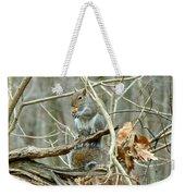 Gray Squirrel - Sciurus Carolinensis Weekender Tote Bag