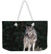 Gray Wolf Endangered Species Wildlife Rescue Weekender Tote Bag