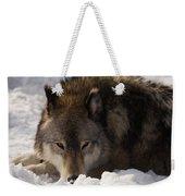 Gray Wolf In Snow Weekender Tote Bag