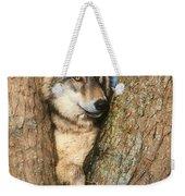Gray Wolf In Tree Canis Lupus Weekender Tote Bag
