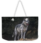 Gray Wolf On Hillside Endangered Species Wildlife Rescue Weekender Tote Bag