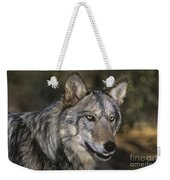 Gray Wolf Portrait Endangered Species Wildlife Rescue Weekender Tote Bag