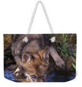 Gray Wolf Pup Endangered Species Wildlife Rescue Weekender Tote Bag