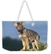 Gray Wolf Pup Montana Weekender Tote Bag