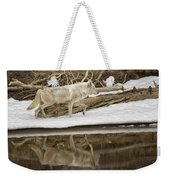 Gray Wolf Reflection Weekender Tote Bag