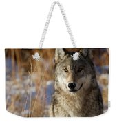 Gray Yearling Weekender Tote Bag