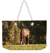 Grazing Horse At Sunset Weekender Tote Bag