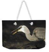 Great Blue Heron Eating Marine Iguana Weekender Tote Bag by Tui De Roy
