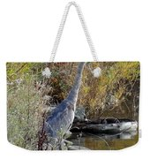 Great Blue Heron - Juvenile Weekender Tote Bag