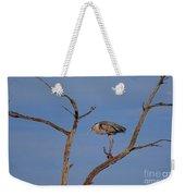 Great Blue Heron Perched On Branch Weekender Tote Bag
