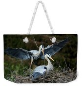 Great Blue Herons Nesting Weekender Tote Bag