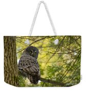 Great Gray Owl Pictures 779 Weekender Tote Bag