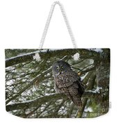 Great Gray Owl Pictures 780 Weekender Tote Bag