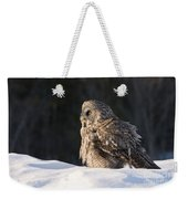Great Gray Owl Pictures 788 Weekender Tote Bag