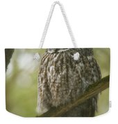 Great Gray Owl Pictures 823 Weekender Tote Bag