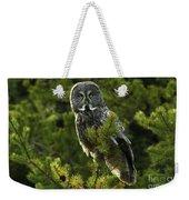 Great Grey Owl On The Hunt Weekender Tote Bag