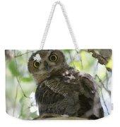 Great Horned Owl Fledgling  Weekender Tote Bag