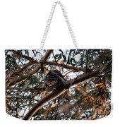Great Horned Owl Looking Down  Weekender Tote Bag