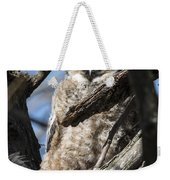 Great Horned Owlet Finishes Lunch Weekender Tote Bag