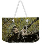 Great Horned Owlets 1 Weekender Tote Bag