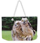 Great Horned Owlets Weekender Tote Bag