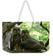 Great Horned Owls Weekender Tote Bag