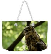 Great Horned Youngster Weekender Tote Bag