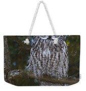 Great Owl Eyes Weekender Tote Bag