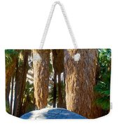 Great Sliding Rock In Lower Palm Canyon In Indian Canyons Near Palm Springs-california Weekender Tote Bag