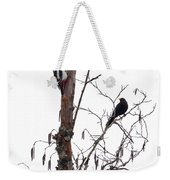 Great Spotted Woodpecker And A Blackbird. Dude What Are You Doing Weekender Tote Bag