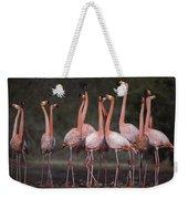 Greater Flamingo Group Courtship Dance Weekender Tote Bag