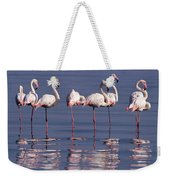 Greater Flamingo Group Weekender Tote Bag