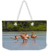 Greater Flamingos Weekender Tote Bag