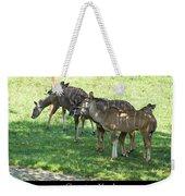 Greater Kudu Weekender Tote Bag