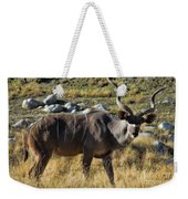 Greater Kudu Grazing Weekender Tote Bag