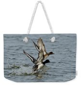 Greater Scaup Pair Weekender Tote Bag