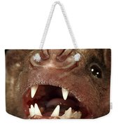 Greater Spear-nosed Bat Weekender Tote Bag