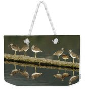 Greater Yellowlegs Weekender Tote Bag