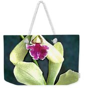 Green And Purple Cattleya Orchids Weekender Tote Bag