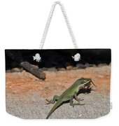 Green Anole Lizard Vs Wolf Spider  Weekender Tote Bag